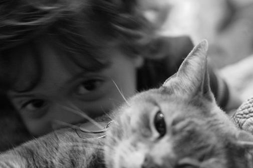 Loss of a Pet | Marci