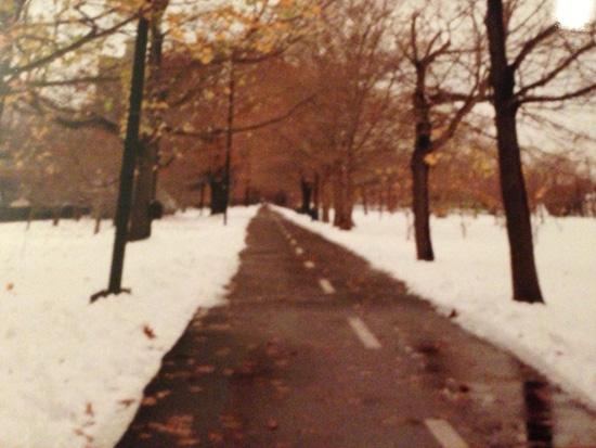Boston_Snow_550